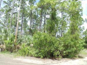 0 Tree Top Trail, Fort Pierce, FL 34951