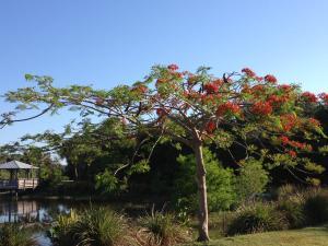 1914 Se Niceville Drive, Port Saint Lucie, FL 34952
