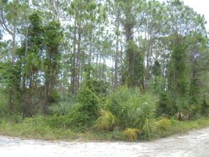 0 Tree Top Trail, Fort Pierce, FL 34951