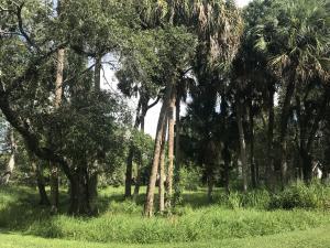 0 Wilderness Drive, Fort Pierce, FL 34982