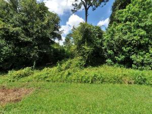 4246 Sw Utterback Avenue, Port Saint Lucie, FL 34953