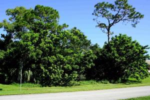 1965 Se Sandia Drive, Port Saint Lucie, FL 34983