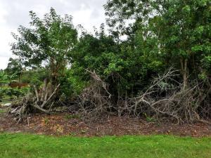 2985 Sw Ortega, Port Saint Lucie, FL 34953