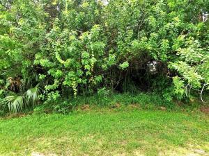 1008 Sw Dalton Avenue, Port Saint Lucie, FL 34953