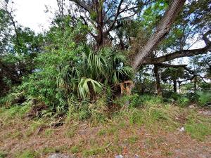 0 Evergreen Avenue, Fort Pierce, FL 34947