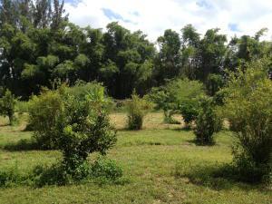 2105 Jewel Lane, Loxahatchee Groves, FL 33470