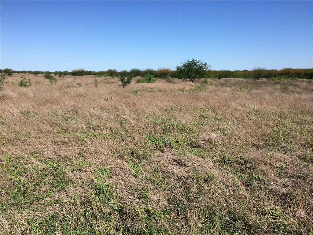 2040 County Road 308, Orange Grove, TX 78372