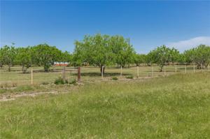 7038 Fm 1833, Robstown, TX 78380