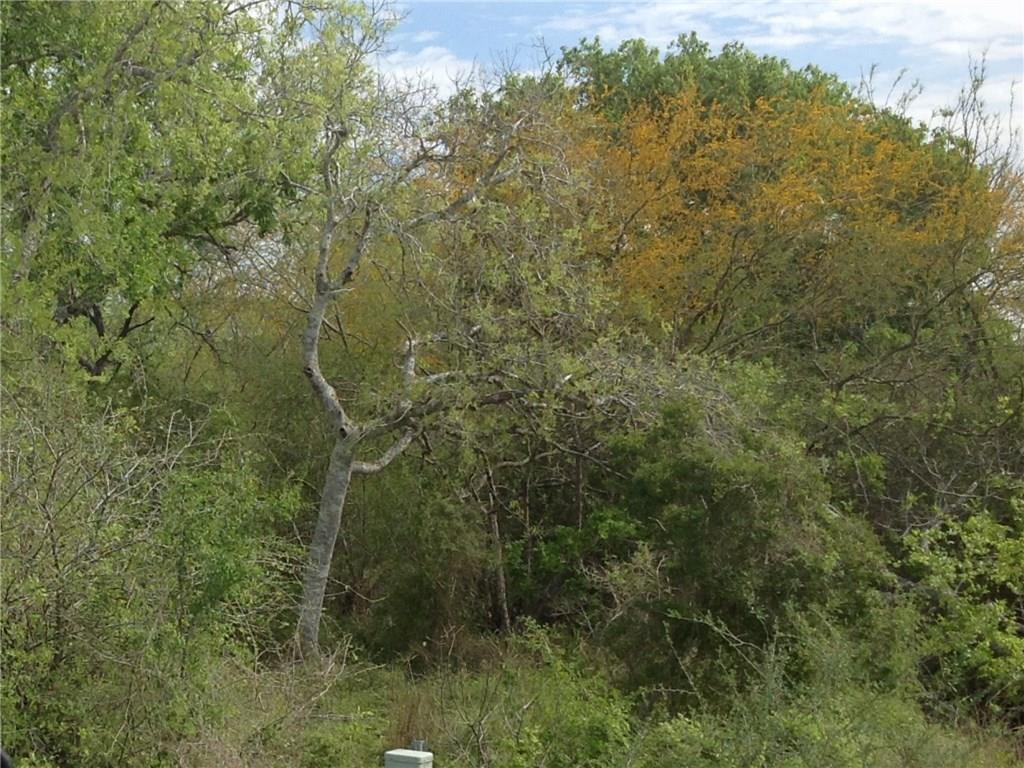 Hwy 281 N Hwy 281, Orange Grove, TX 78372