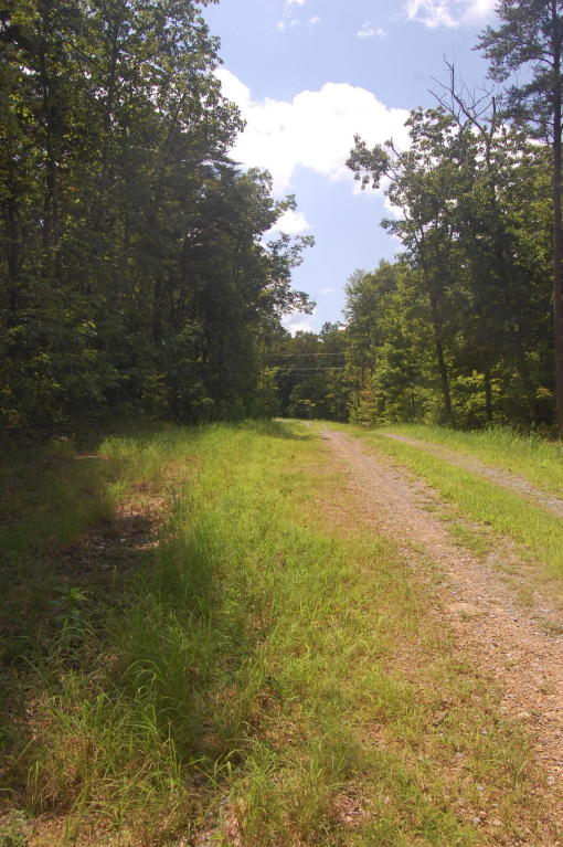 6 Highland Forest 6, Cloudland, GA 30731