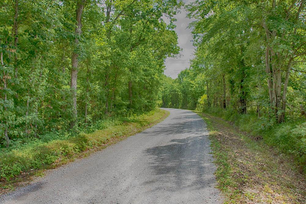 0 Gordon Forester, Cloudland, GA 30731