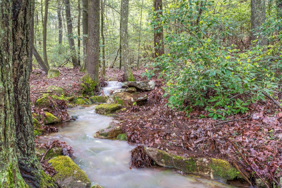 0 Hixson Springs Rd, Signal Mountain, TN 37377