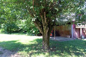 1655 Back Valley Rd, Trenton, GA 30752