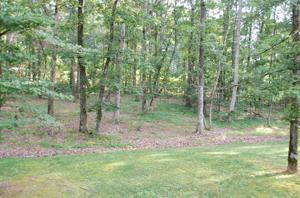 81 Wild Acres Ln, Rising Fawn, GA 30738