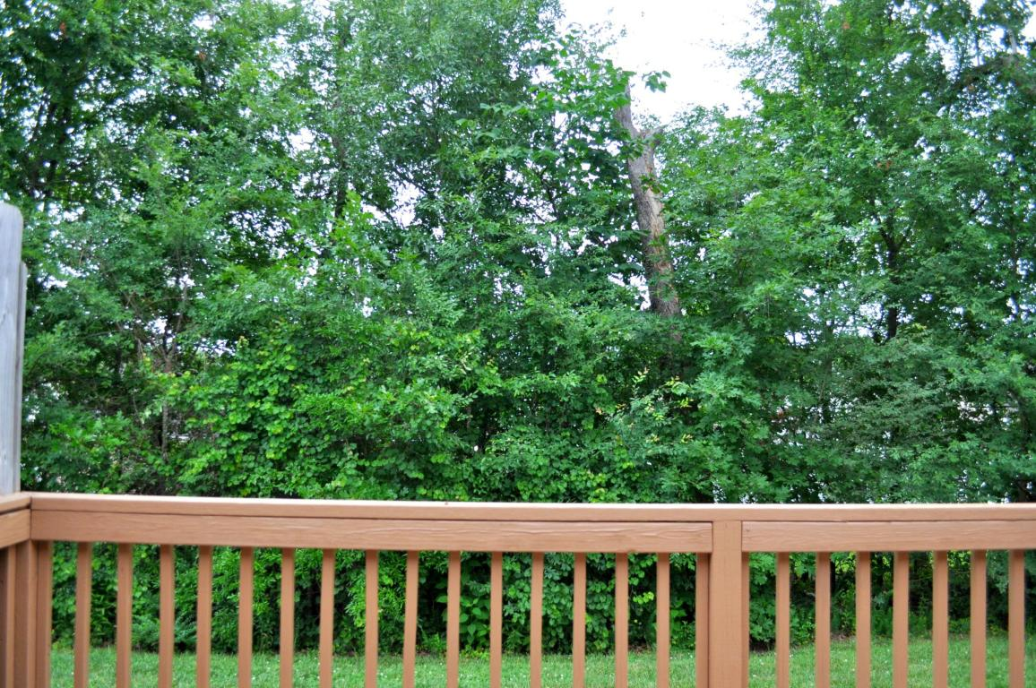 7624 Magnolia Leaf Ln, Chattanooga, TN 37421