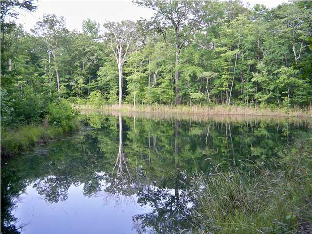 0 Lake Loop Rd H29, Cloudland, GA 30731
