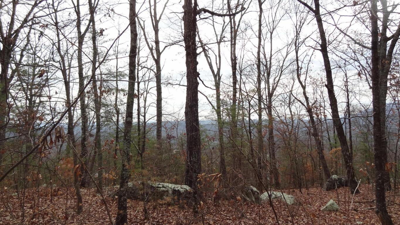 970 Pointed Rock Ln, Hixson, TN 37343