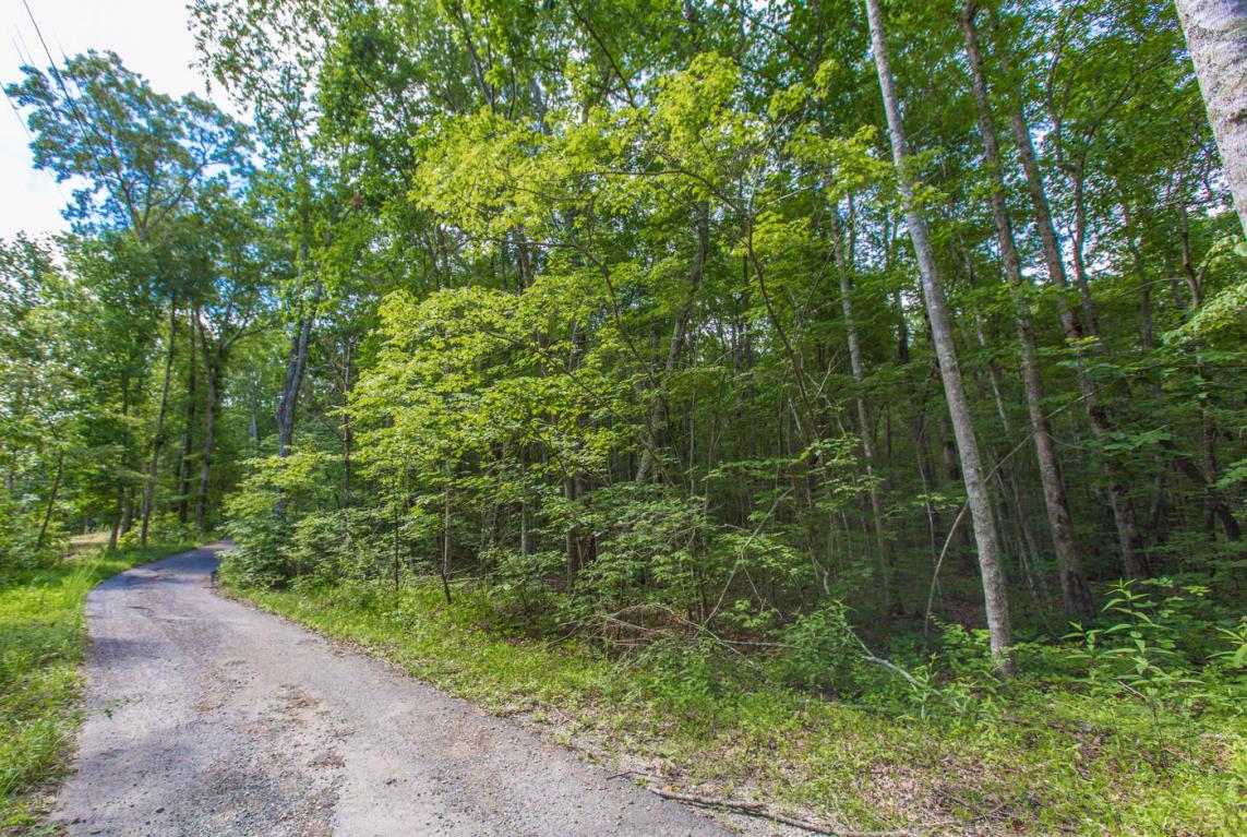 1077 Miller Rd, Signal Mountain, TN 37377