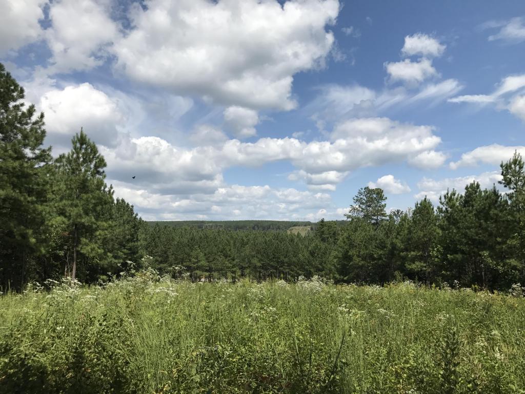 0 Walden Farms Rd 16, Signal Mountain, TN 37377