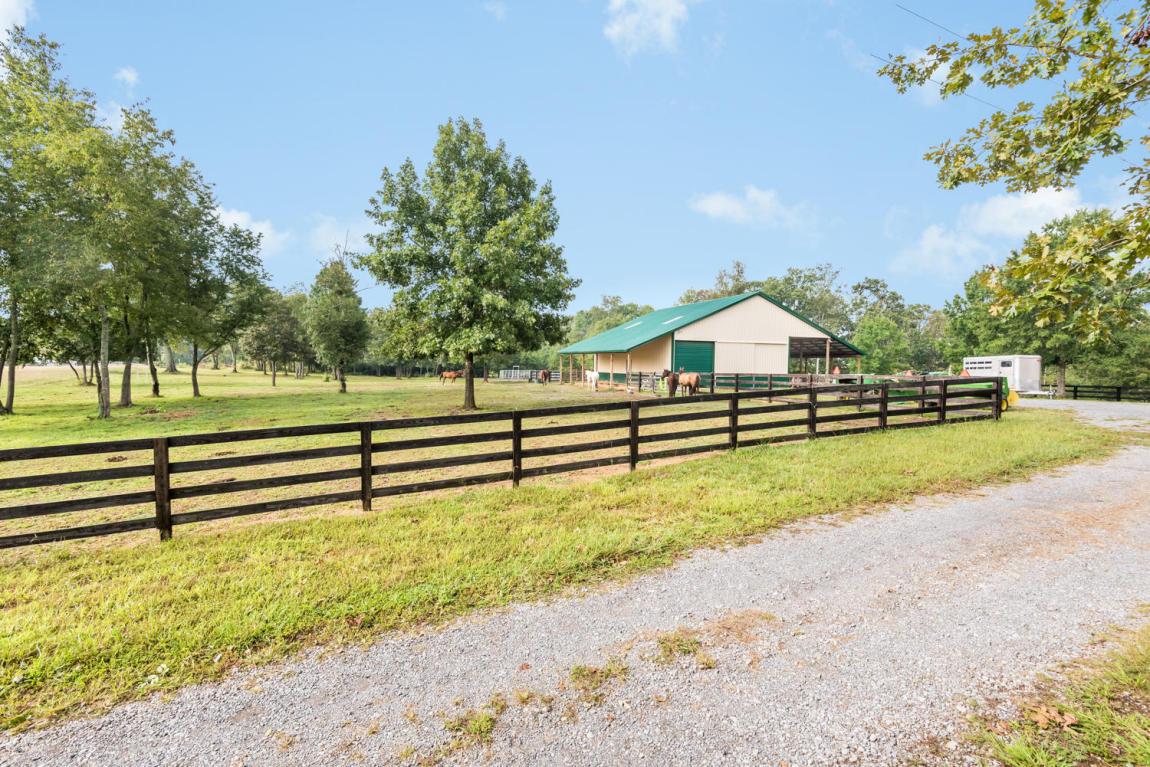 12815 Birchwood Pike, Harrison, TN 37341