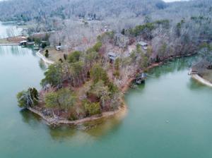 157 Edgewater Dr, Spring City, TN 37381
