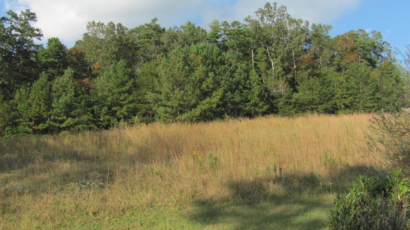 23 Oak Meadow Dr, Rock Spring, GA 30739