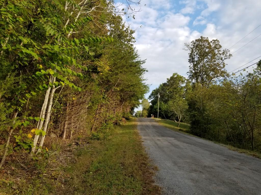 Lot 50 Key Cove Rd #50, Spring City, TN 37381
