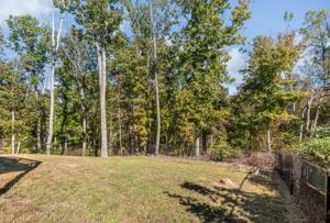 96 Round Tree Ct, Flintstone, GA 30725