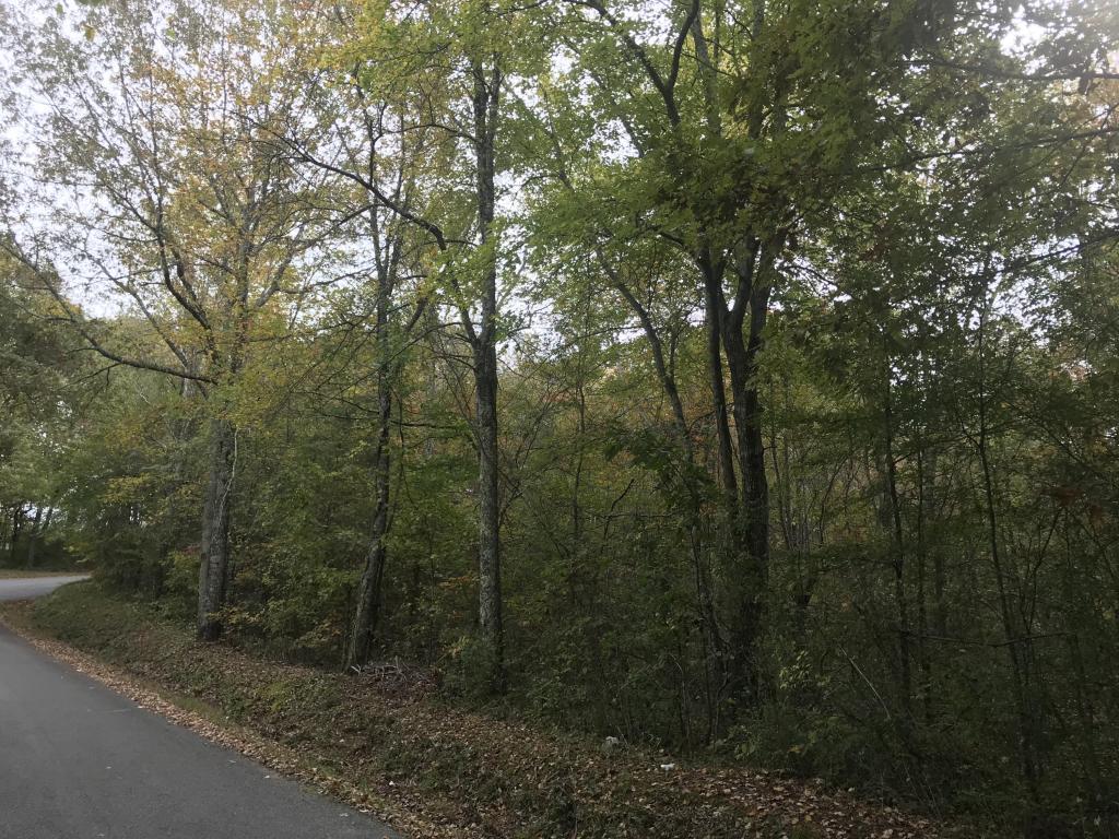 0 W Ridge Trail Rd, Soddy Daisy, TN 37379