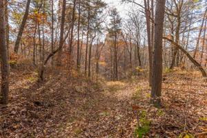 409 Black Mountain Rd, Dunlap, TN 37327
