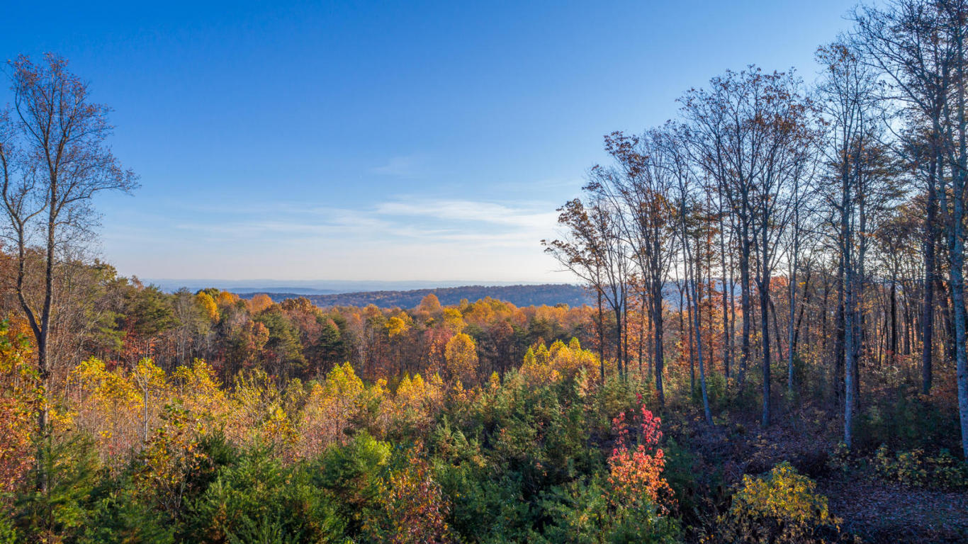 0 Lookout Crest Ln 22, Lookout Mountain, GA 30750