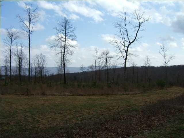 101 Log Cabin Ln, Dunlap, TN 37327