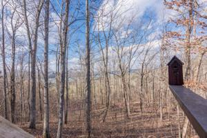 780 Bent Tree Dr, South Pittsburg, TN 37380