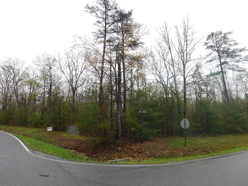 39 Early Rising Dr, Signal Mountain, TN 37377