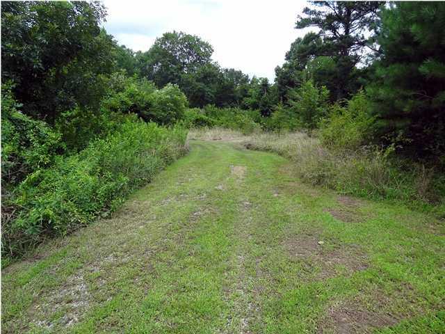 180 Worthington Gap Rd, Rock Spring, GA 30739