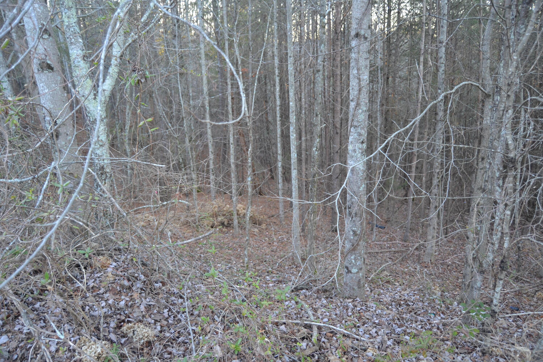 13 Ridgerock Dr, Signal Mountain, TN 37377