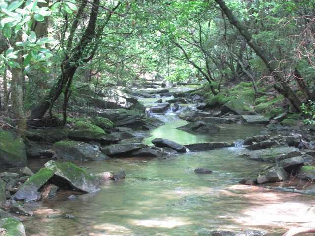 24 Clear Creek Dr, Signal Mountain, TN 37377