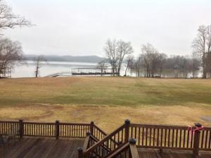 1235 New Lake Rd, Spring City, TN 37381
