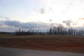 0 Sweedens Overlook, Jasper, TN 37347