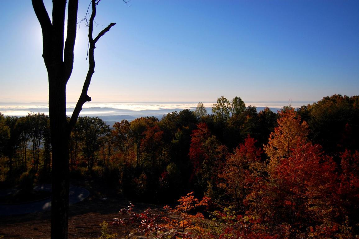 1230 Sawyer Cemetery Rd, Signal Mountain, TN 37377