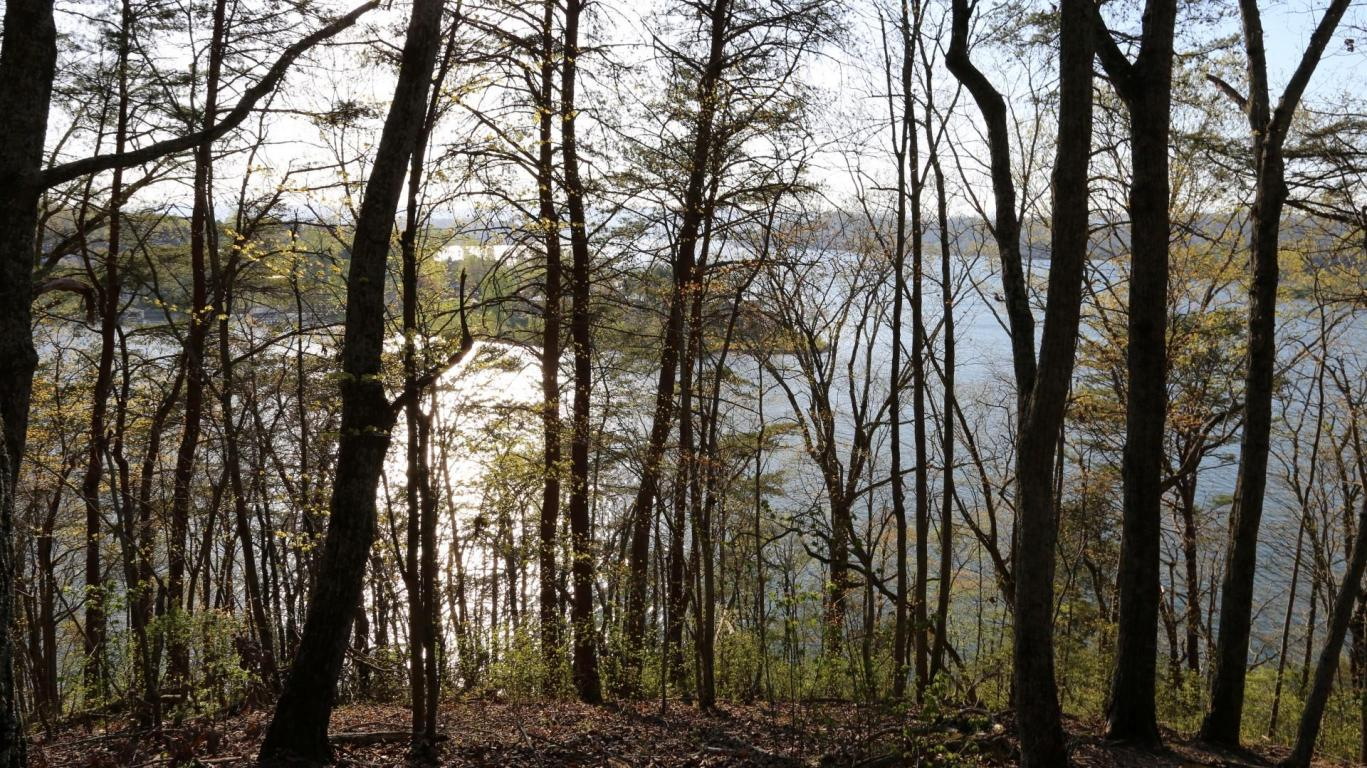 Lot 408 Oak Tree Dr #408, Spring City, TN 37381