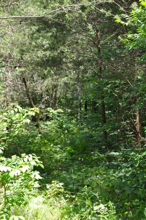 0 Polly Ln 080 018.04, Signal Mountain, TN 37377