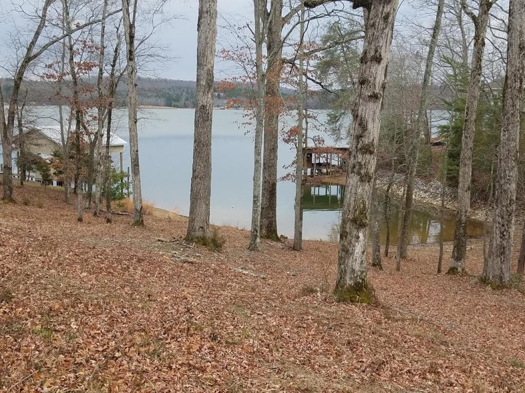 Lot 3 Edgewater Rd Off Dr, Spring City, TN 37381