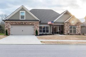 8353 River Birch Loop, Ooltewah, TN 37363