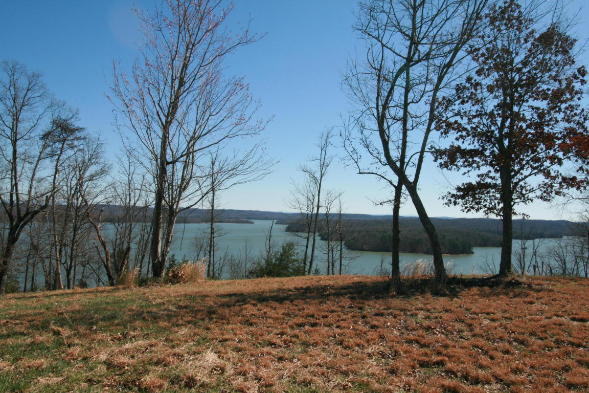 0 Hidden Forest Tr, Spring City, TN 37381