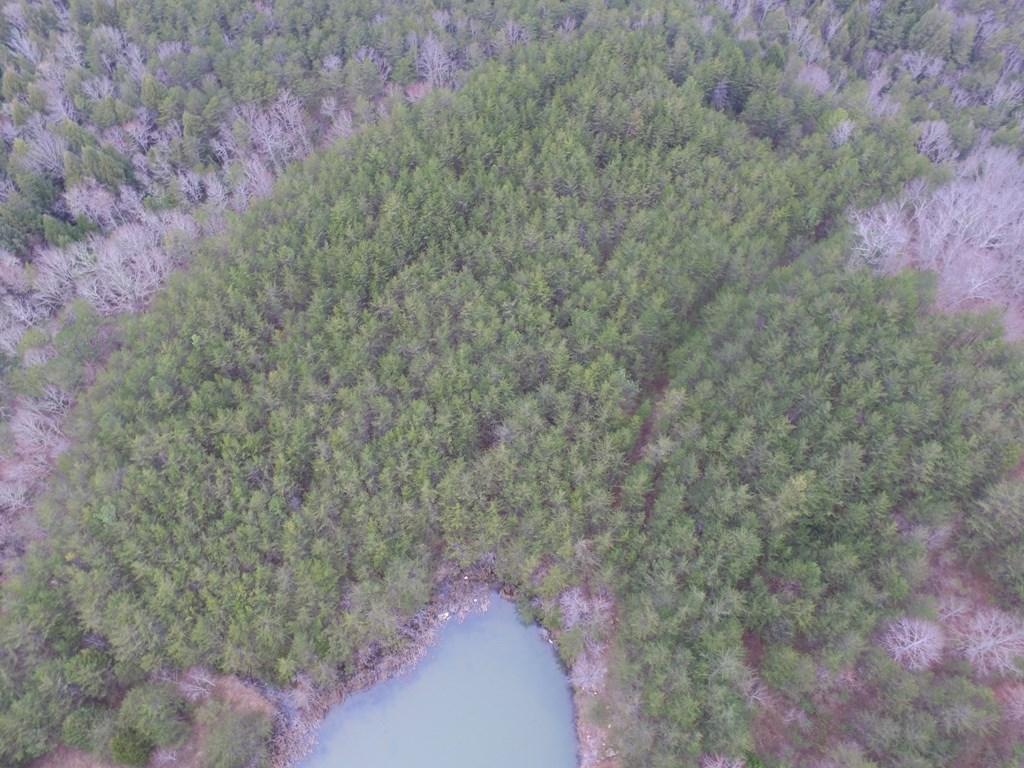 12 Quarry Rd, Dunlap, TN 37327