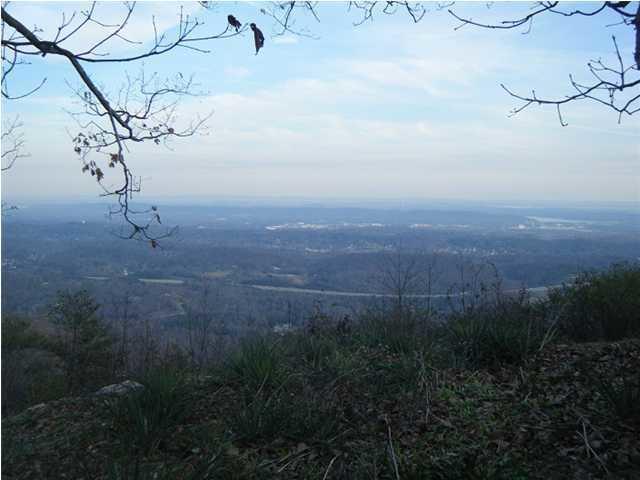 1530 E Brow Rd, Signal Mountain, TN 37377