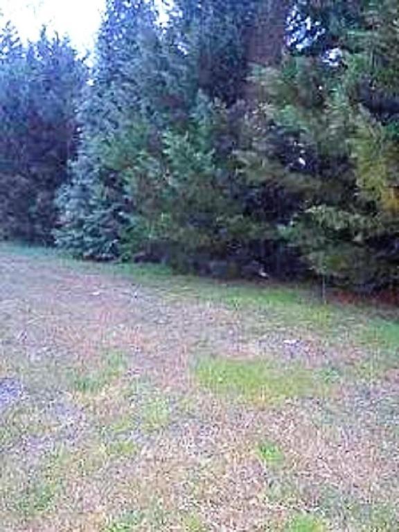 6817 Village Lake Cir, Chattanooga, TN 37412