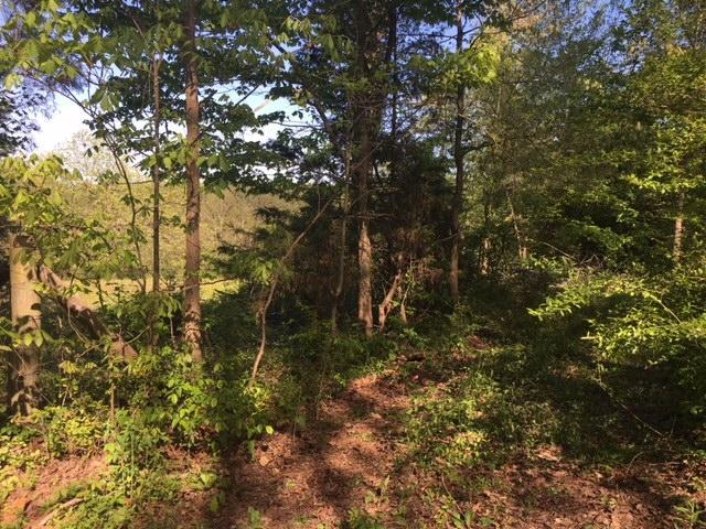 4916 Howardsville Rd, Apison, TN 37302