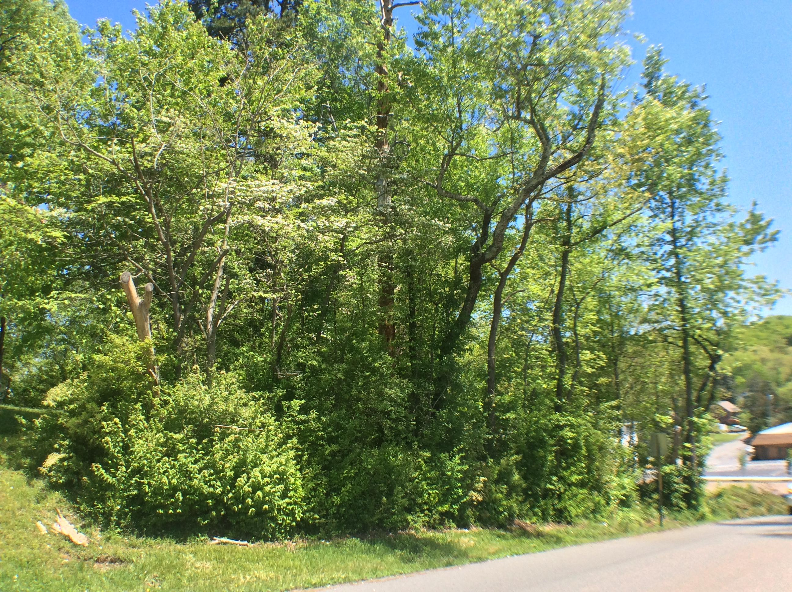 3 W Meadowbrook Dr, Chattanooga, TN 37415